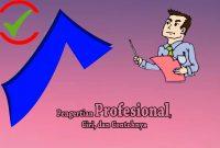Profesional Adalah