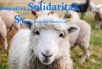 Solidaritas Adalah