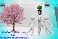 Fungsi Solidaritas