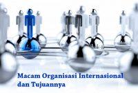 Jenis Organisasi Internasional